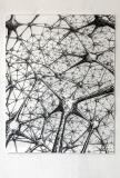 Netzwerk 2016, Kohle auf Papier, 140 x 100 cm